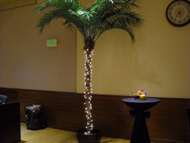 Festive-looking palm tree at The Rock Church's Volunteer Gala.