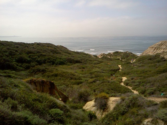 Torrey Pines State Reserve.