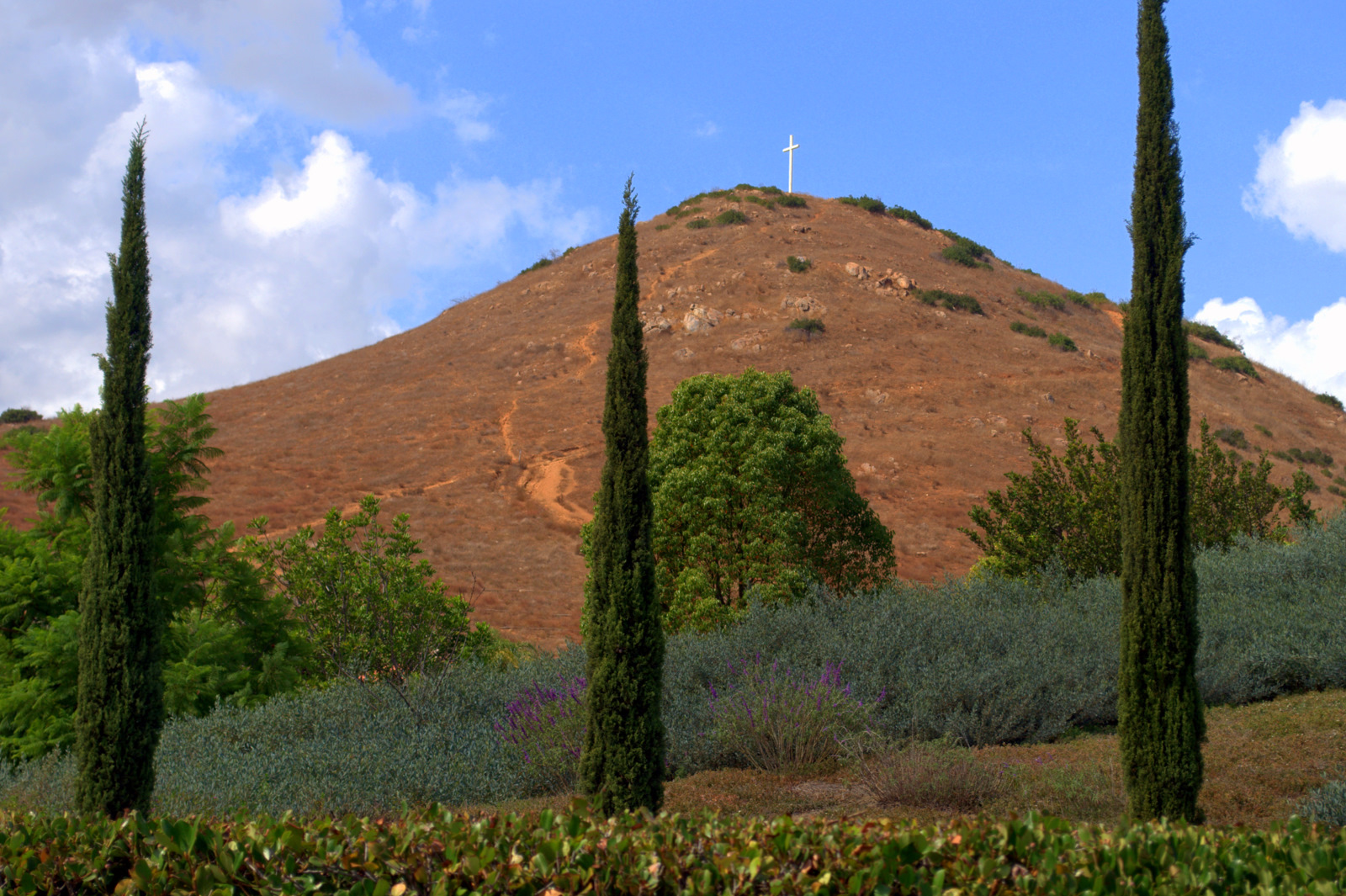 Rancho Bernardo photo