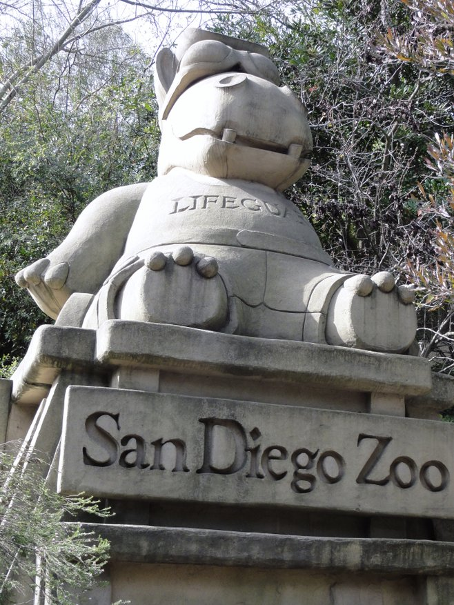 San Diego Zoo photo