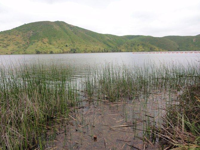 Lake Hodges.