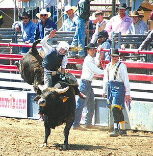 """""""It's not like you can go to Europe and Asia and see cowboys being bucked off a bull."""""""