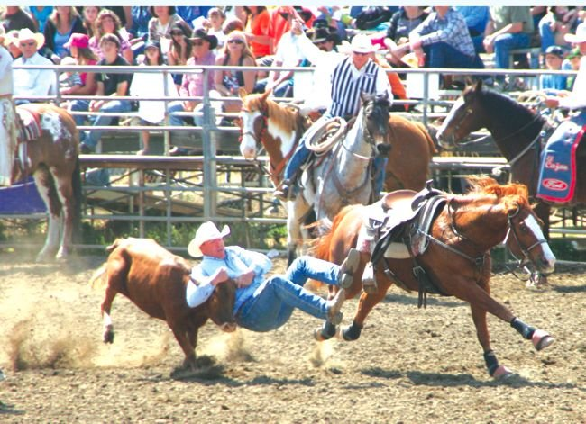 """Rodeo people don't consider failure.  They just do it."""