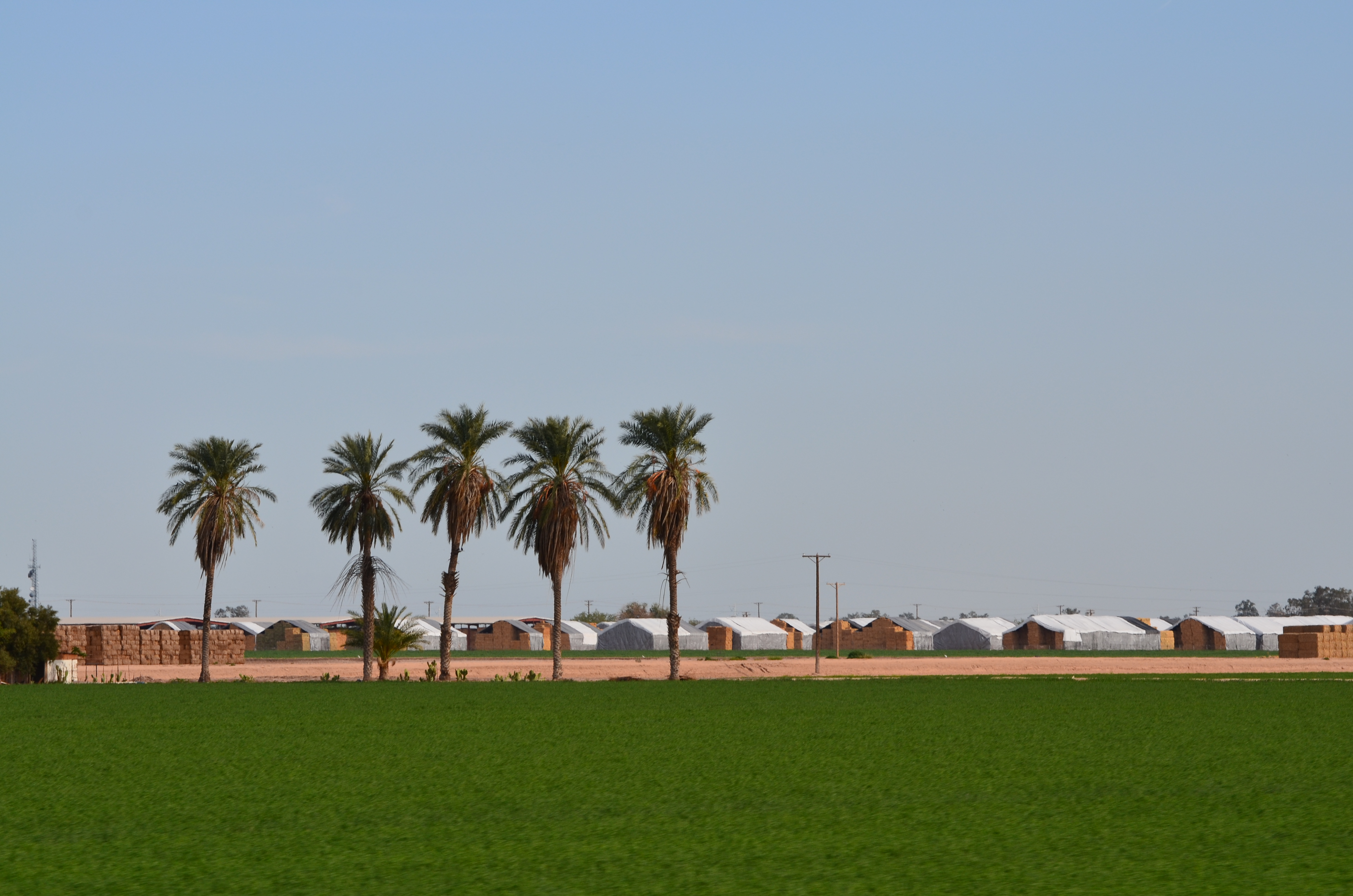 Imperial Valley photo