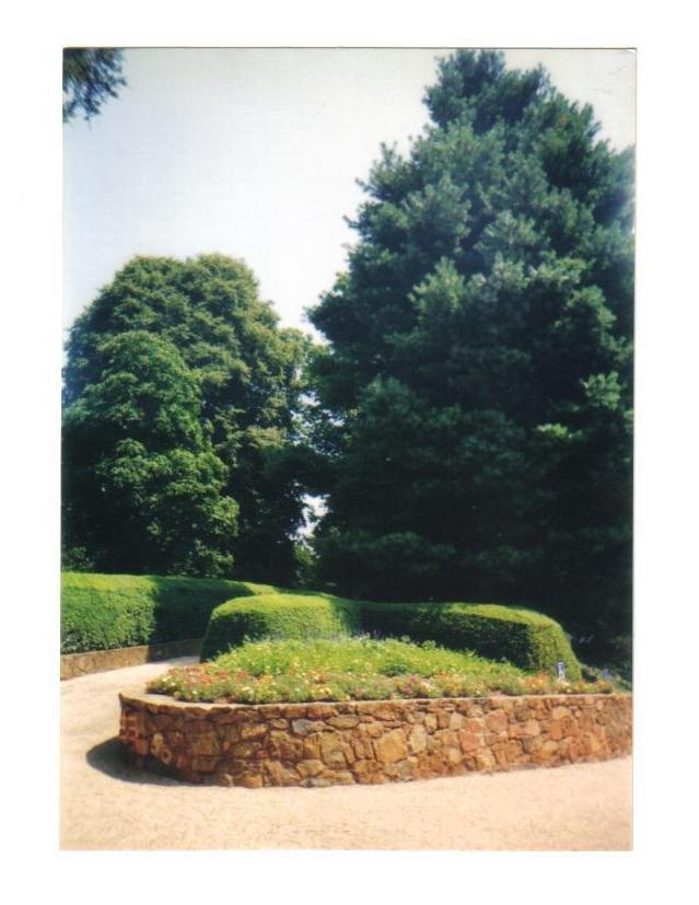 Virginia photo