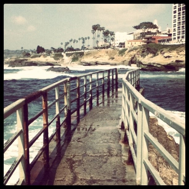 This photo was taken in La Jolla on the Ocean wall.