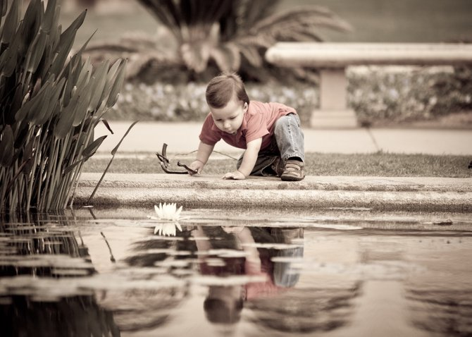 Family Fun and Reflections in the Coy/Lily Pad Pond at Balboa Park.
