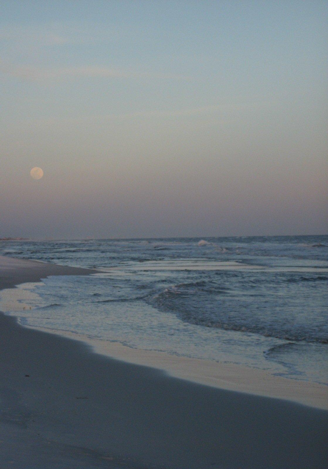Grayton Beach State Park Florida San Diego Reader