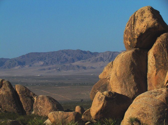 View of the Mojave from Indian Cove campground