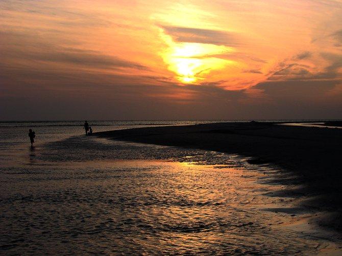 Sunset shell hunt in Little Gasparilla Island, Florida