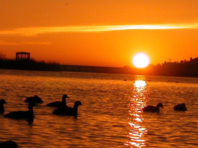 Lake Murray 2004
