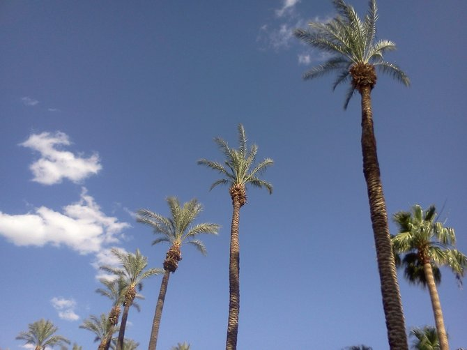 A typical view in Palm Desert