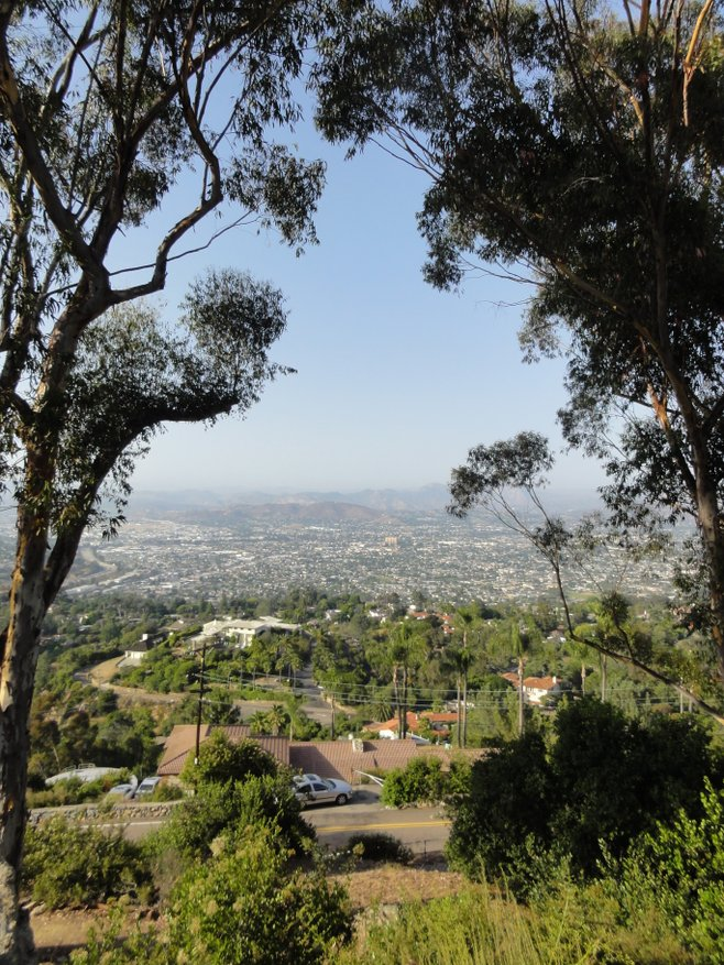 Mount Helix Park photo