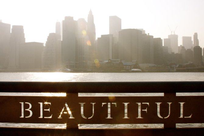This photo was taken from the Brooklyn Bridge Park, of the beautiful New York City Skyline.
