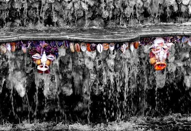Slightly scary shell faces in one of the many beautiful fountains at Versailles.