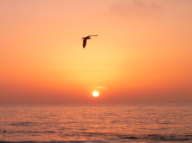 La Jolla Beach Sunset