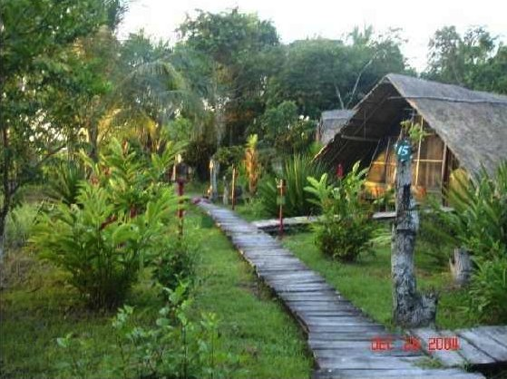 jungle digs, Orinoco Delta Lodge