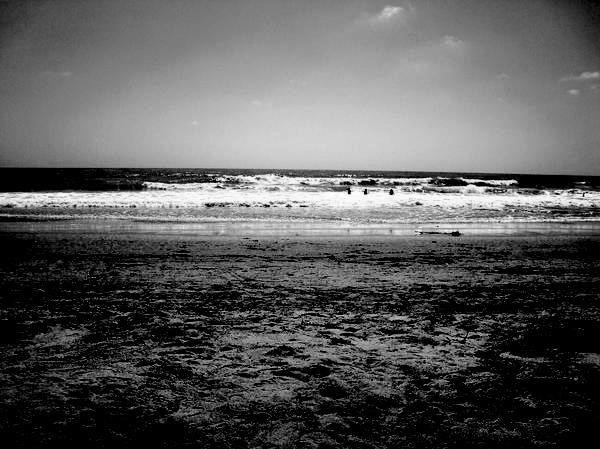 Moonlit Beach. Encinitas. San Diego,CA.