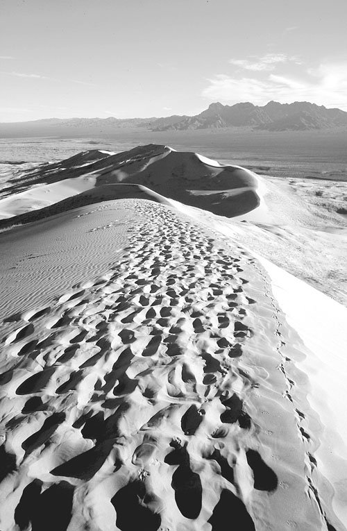 East Ridge, Kelso Dunes