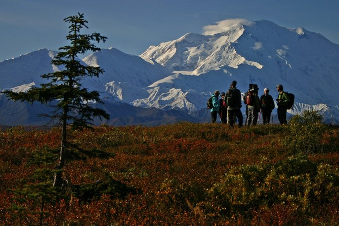 Hikers, Denali National Park.