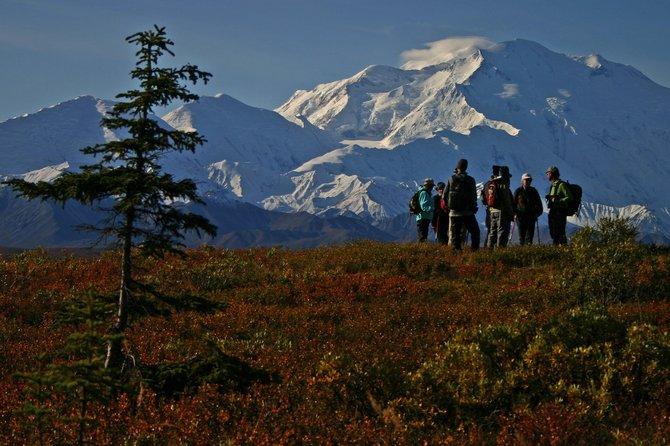 Hikers, Denali National Park.