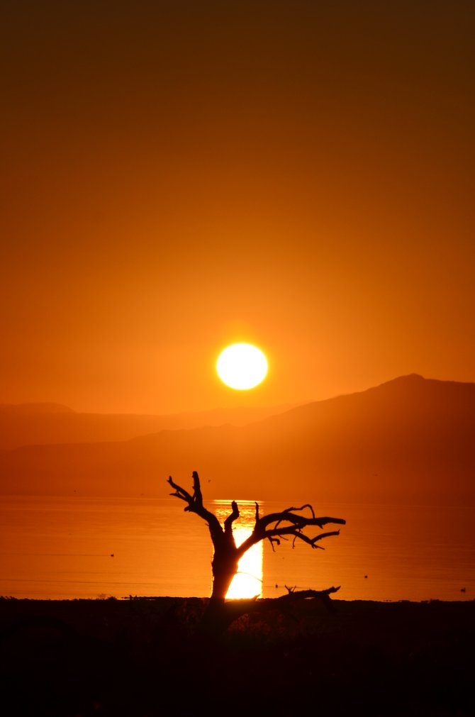 """""""Eerie Sunset @ The Salton Sea-Imperial County""""  The month of October provides awesome sunsets as well as a Harvest Moon, so grab your camera and get ready for the photo session of your life! """"it's a Vilma!""""  -Vilma Ruiz Pacrem"""