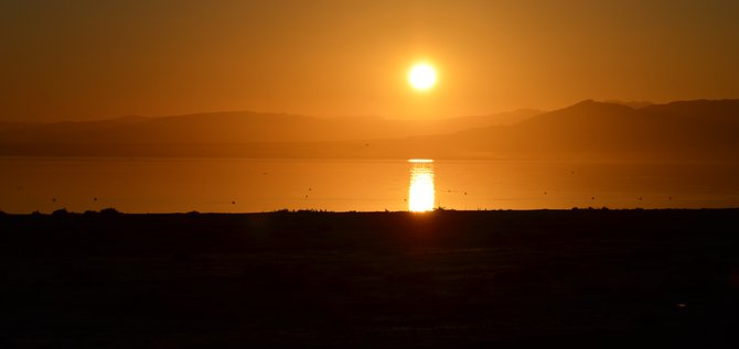 """""""Pelicans and Seagulls, Oh My!"""" The Salton Sea with it's ever changing look.  This photo was taken near the Border Patrol Checkpoint on the Hwy 111 side of the Imperial County. """"it's a Vilma!""""  -Vilma Ruiz Pacrem"""