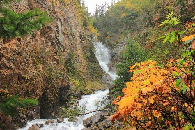 The Lower Reid Falls at the Gold Rush Cemetary in Skagway, Alaska.