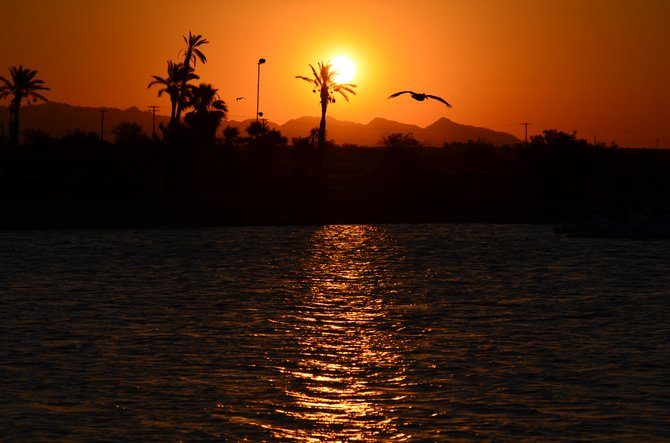 The Salton Sea has beautiful sunrise's as well as sunsets! Photo was taken at North Shore in the Imperial County. Enjoy...
