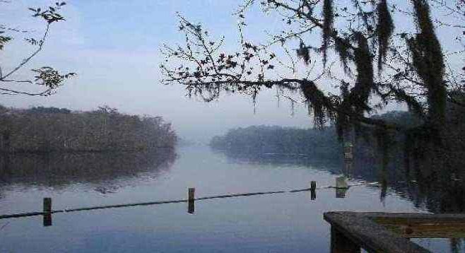 Tranquility in the morning hours at Blue Spring