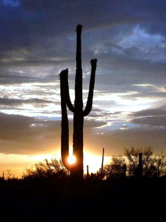 Sunset near Tucson, AZ