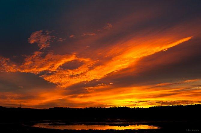 Sunrise, 1/11/12  Via De La Valle, East of the 5