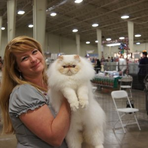 The kitty looks thrilled!