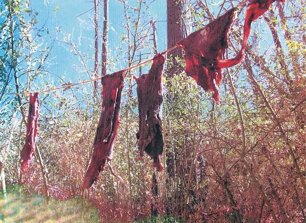 Another rope held strips of freshly killed deer meat.