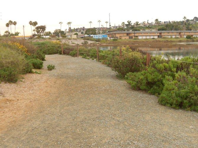 Nature path at Famosa Slough.