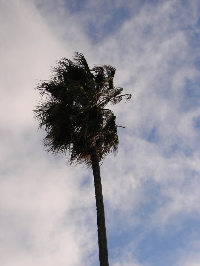 high winds from the south and
