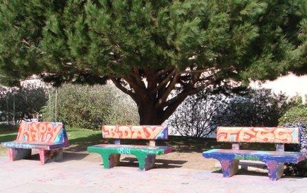 "La Jolla High's ""senior benches"""