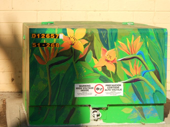 Colorful floral utility box art along Catalina Blvd.