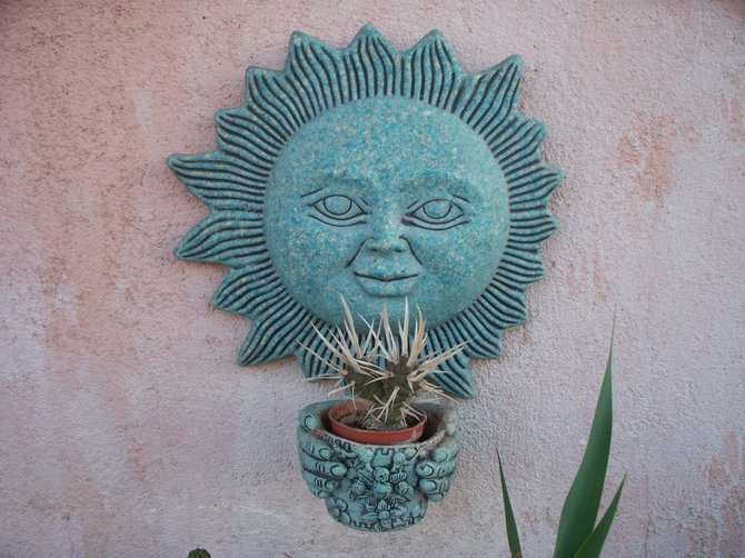 El Hongo cactus
