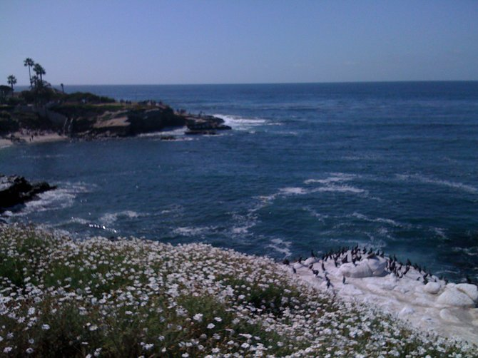 Beautiful La Jolla Cove, CA