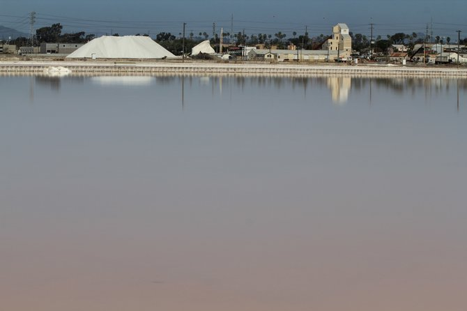 South Bay salt factory.  The second oldest business in San Diego County, the South Bay Salt Works is hidden away on a stretch of San Diego Bay in Chula Vista.