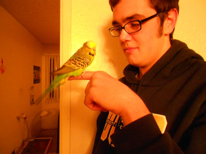 My son with his pet bird, Bridget.