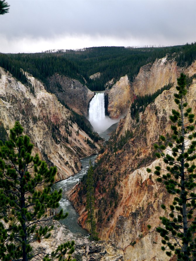Lower Falls in Yellowstone National Park Wyoming