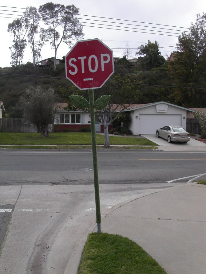 stop sign at bottom of boxwood gets a sweater job