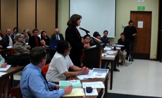 Matheatics professor Janet Mazzarella addresses the board, March 14, 2012