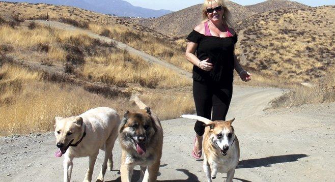 Dog Rescue Jobs San Diego