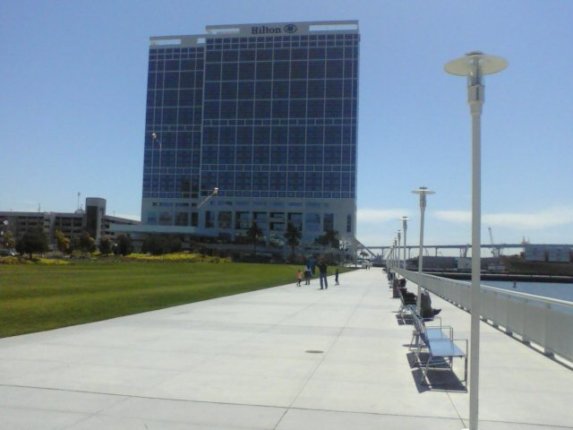 A family flies kites near the Hilton San Diego Bayfront