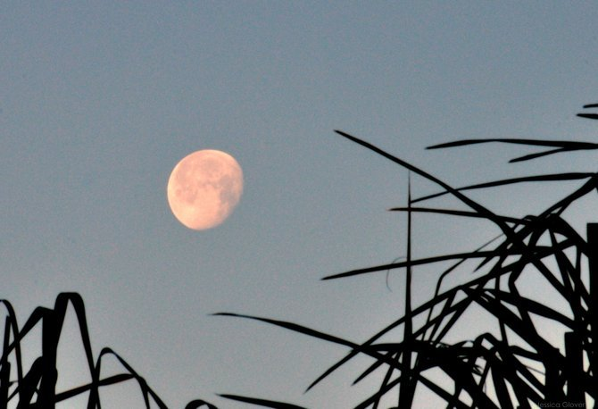 7 am Moon in Rancho Bernardo