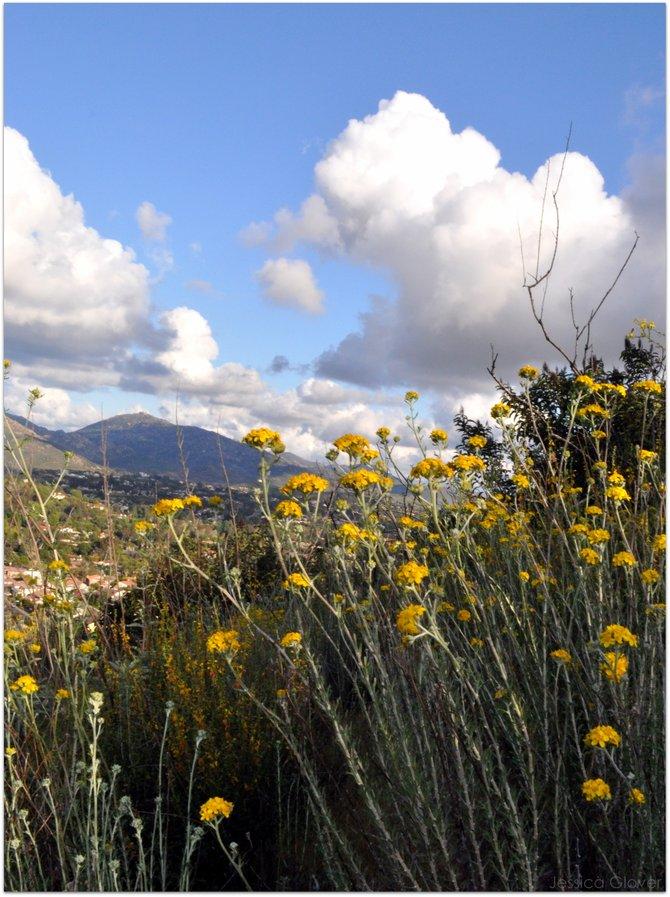 Atop Battle Mountain in Rancho Bernardo