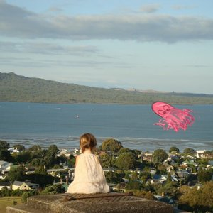 Mt. Victoria, near Auckland, New Zealand.